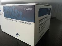 110005人肿瘤坏死因子α(TNF-α)定量检测试剂盒(ELISA)