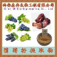 葡萄籽提取物 现货直供 10:1 抗氧化
