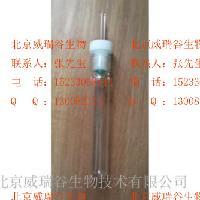 SLC色譜凈化柱-北京威瑞谷生物