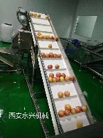 果酒生产线设备、苹果酒生产线