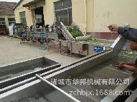 HB多功能清洗机   西红柿清洗机  节能环保型