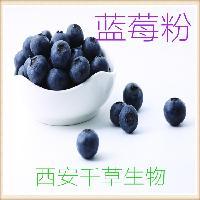 蓝莓粉厂家定做天然蔬菜汁粉水果浓缩汁粉
