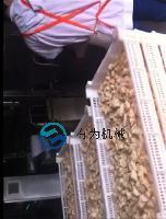 炸鸡米花的机器全自动鸡米花油炸设备