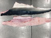 帶皮水鯊魚肉