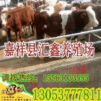 辽宁省毛驴多少钱一斤
