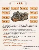 俄罗斯进口桦树茸专治糖尿病
