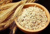 燕麦酵素粉  品质保证  厂家直销
