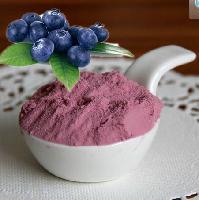 兰州蓝莓粉   种植基地    量大从优   欢迎采购