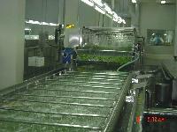 HB多功能蔬菜清洗机   蒜薹去杂质清洗机