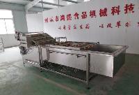 山东鸿盛鲜枣清洗机 专业生产厂家