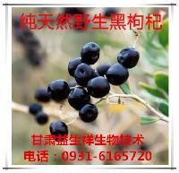 黑枸杞花青素  种植基地    量大从优   欢迎采购