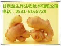 甘肃益生祥 生姜粉   种植基地    量大从优   欢迎采购