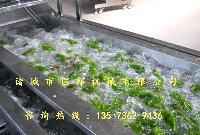 供应国邦牌蔬菜清洗机,气泡清洗机规格