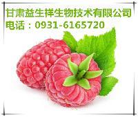 覆盆子酵素   品质保证   产品优质   包邮