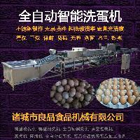醋蛋液加工设备