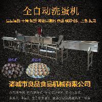 中国名优产品 洗蛋机厂家 质量可靠服务周到 用的放心