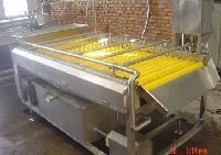 连续式瓜果蔬菜清洗机