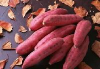 薯童  番薯