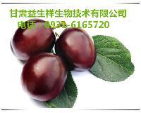 李子酵素  产品优质   品质保证   现货包邮
