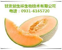 哈密瓜酵素  产品优质   品质保证   包邮