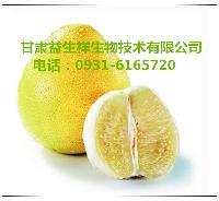 兰州葡萄柚提取物   种植基地    量大从优   欢迎采购