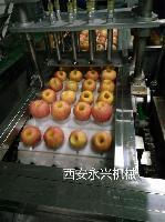苹果蒸馏酒加工设备及生产线设备安装