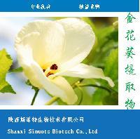 植物提取物厂家直销染料木素98% 金雀异黄酮