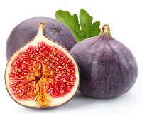 *的无花果鲜果-绿色天然-量大优惠