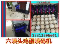 kp-19鸡蛋喷码机,山东kp-19鸡蛋喷码机,郑州kp-19鸡蛋喷码机