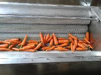 胡萝卜清洗机,马蹄清洗机,花生清洗机报价