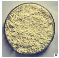 超凡酶制剂食品级β-半乳糖苷酶 乳糖酶厂家
