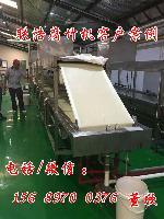大型全自动腐竹机生产线设备多少钱一套?