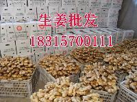 山东生姜一斤多钱?大姜批发价格多钱一斤?