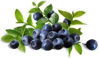 国产蓝莓12mm起