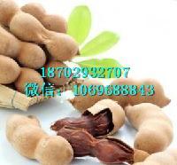酸角速溶粉 罗望子酸豆提取物 罗望子酸豆粉 现货供应