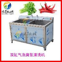 小型洗菜机 叶菜去沙清洗机 洗豆芽机 全自动洗菜机可定造