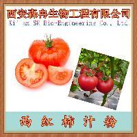 西红柿汁粉  番茄粉 浓缩萃取