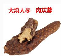肉苁蓉提取物   种植基地    量大从优   欢迎采购