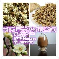 白梅花提取物厂家、绿萼梅粉、白梅花浓缩速溶粉粉