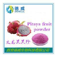 火龙果果粉 Pitaya fruit powder 优质火龙果果粉厂家