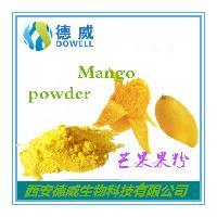 芒果果粉 Mango powder *天然水溶速溶芒果果粉