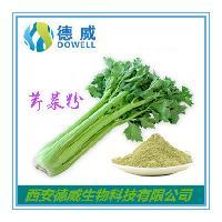 芹菜汁粉 优质芹菜汁粉批发价格 热销芹菜汁粉