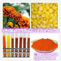 玉米黄素/质20% 可制粒可压片 可代加工OEM