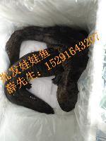2017年中国大鲵(娃娃鱼苗价格)