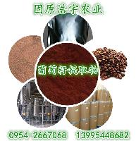 葡萄籽提取物 原花青素95% 厂家现货供应 葡萄籽速溶粉