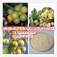 藤黄果提取物 羟基柠檬酸50% 60% 藤黄果浸膏粉