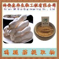 鸡腿菇提取物 10:1  刺毛菇提取物
