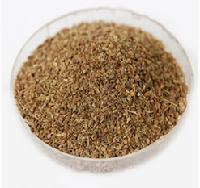 兰州芹菜籽提取物   种植基地    量大从优   欢迎采购