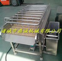 长期供应桑黄加工设备--诸城鼎诚机械