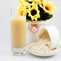 海南香蕉粉 速溶粉 香蕉粉 各种果粉厂家有售批发